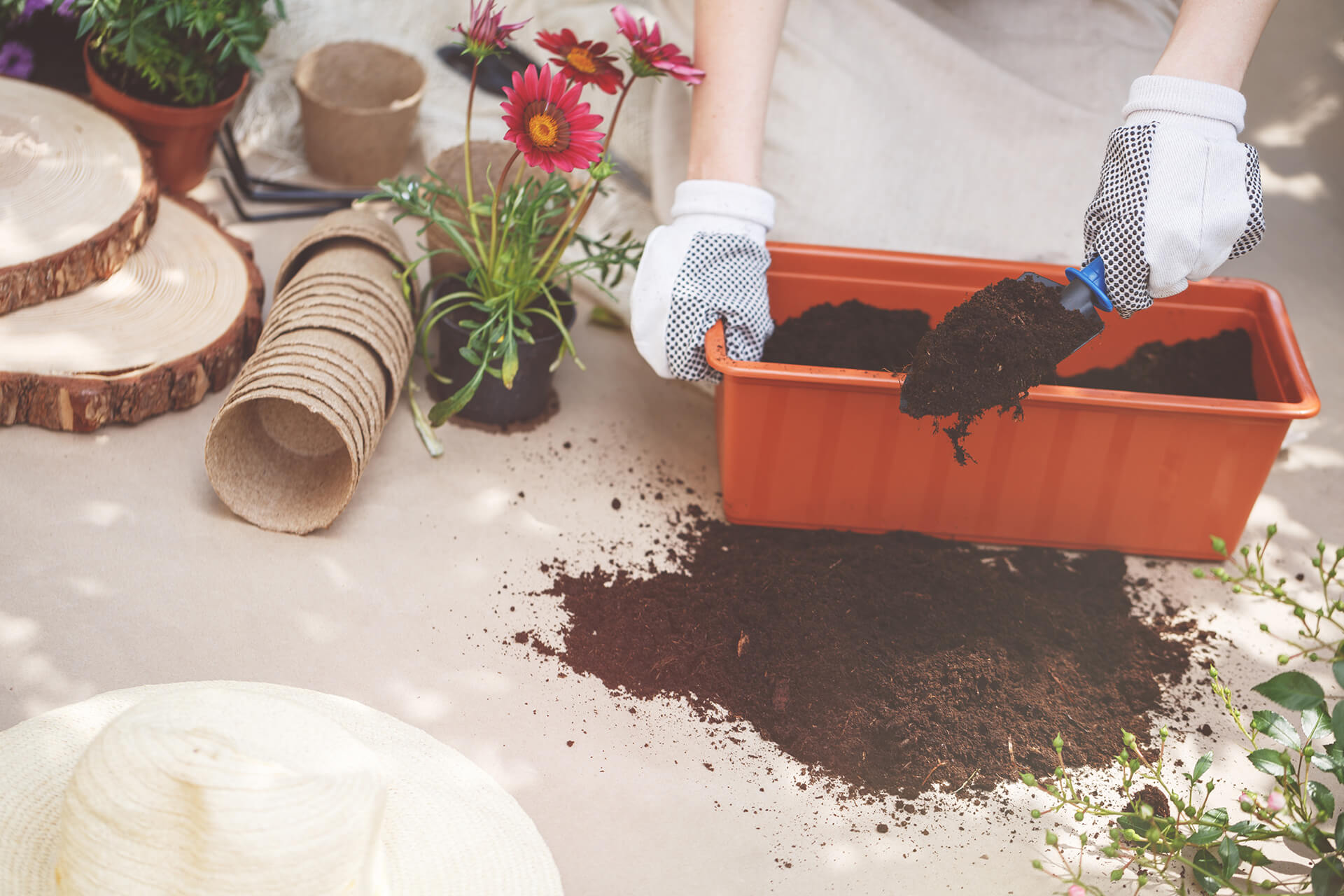 person-fertilizing-soil-in-container-P2BPT4E-1.jpg