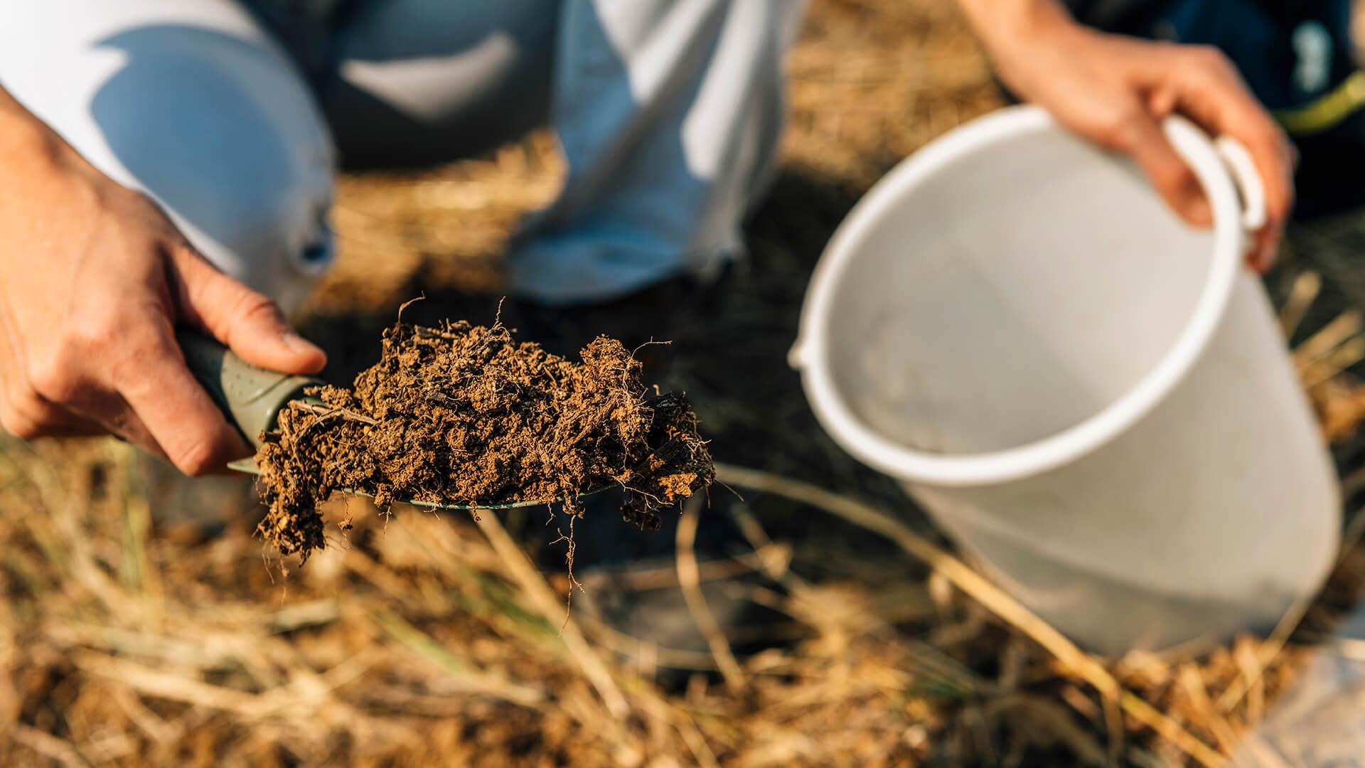 soil-fertility-analysis-female-agronomist-taking-78T3NX2-1.jpg